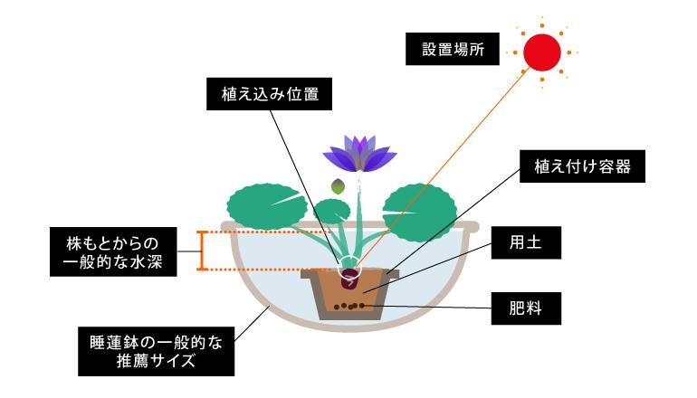 kankyo_tropical2